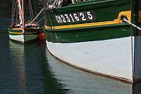Europe/France/Bretagne/29/Finistère/Douarnenez: les bateaux de pêche  du Port-Musée de Port-Rhu