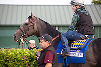 HALLANDALE BEACH, FL - JANUARY 27: Assistant trainer Jimmie Barnes and exercise rider Dana Barnes waiting to take Arrogate onto the track for an easy gallop before Saturday's Pegasus World Cup at Gulfstream Park. (Photo by Arron Haggart/Eclipse Sportswire/Getty Images