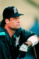 Darren Daulton of the Florida Marlins during a game at Dodger Stadium in Los Angeles, California during the 1997 season.(Larry Goren/Four Seam Images)