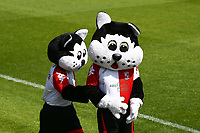 Woking mascots during Woking vs Welling United, Vanarama National League South Promotion Play-Off Final Football at The Laithwaite Community Stadium on 12th May 2019