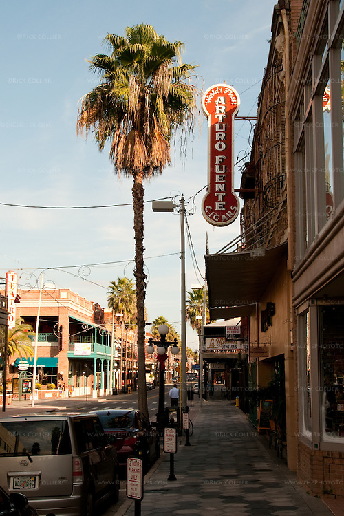 Cigar signs compete with palm trees in Ybor City, Tampa, Florida, USA.