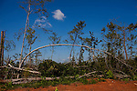 Devastation left behind by a tornado that destroyed many homes in Vaughn, Georgia. Months later, the community is still picking up the pieces.