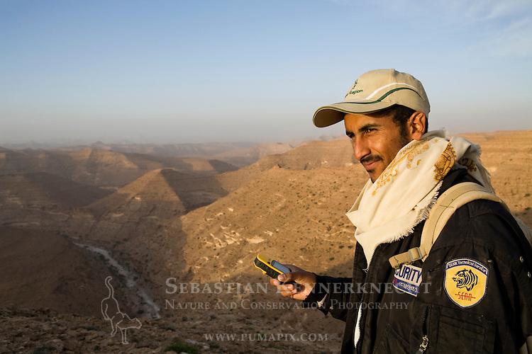 Arabian Leopard (Panthera pardus nimr) researcher Waleed Al'Rail checking gps to find camera trap in sandstone desert, Hawf Protected Area, Yemen
