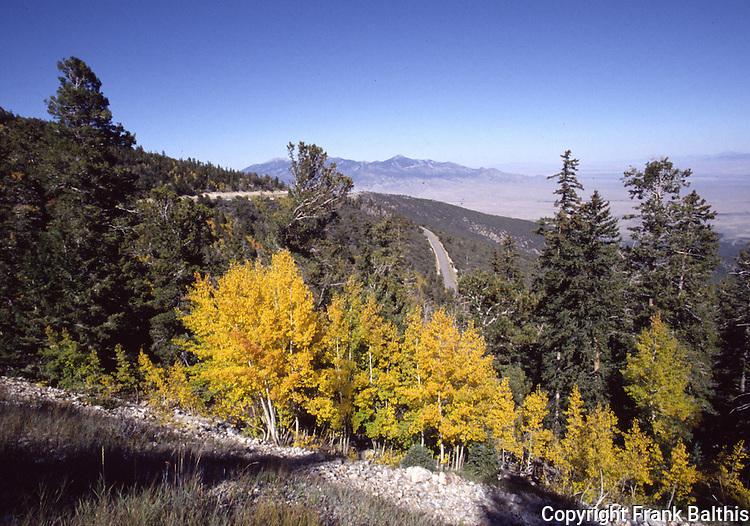 Great Basin National Park in October