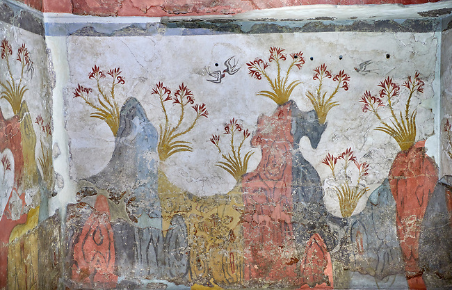 The Spring fresco Minoan Wall painting from Akrotiri, National archaeological Musuem Athens Minoan artefact. 17th-16th cent BC.<br /> <br /> The Minoan 'Spring Fresco' is the only fresco found in situ at Akritiri covering three walls. It depicts the rocky Theran lanscape of Santorini before the volcanic eruption: clusetrs of red lilies with yellow stems dominate the red and grey volcanic rock formations. Swallows swoop above, either alone or in pairs animating the scene and announcing natures annual rebirth of Spring.<br /> <br /> The Spring fresco has an opulent use of colours and a lively movement bu the lilies swaying in the wind as well as the swallows at play. Room D2 Complex D.