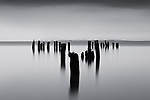 The remains of a bygone era of wealth and prosperity from the timber barons of the late 1800 and early 1900s, old pilings loom in the mist on the Washington side of the mighty Columbia River. The overcast skies provided the perfect atmospheric conditions to light the subject, the falling rain softens the image and disturbs the water such that the long exposures necessary with my smallest apertures render the image as a mysterious and quiet, yet powerful image.