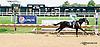 winning at Delaware Park racetrack on 8/7/14