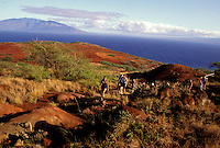 A group of hikers walk on a red dirt path on the largely uninhabited island of Kahoolawe with the island of Maui in the background.