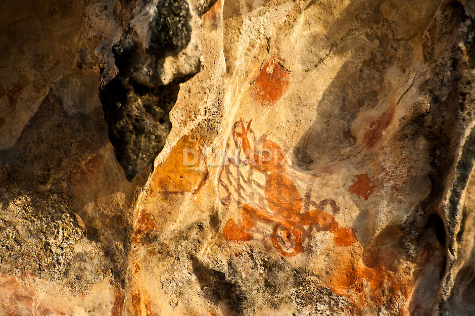 Prehistoric rock art on a cliff face near Mai Mai village, Namatota Strait, near Kaimana, Papua. Interesting figure recalls a 3-legged, well-endowed gecko.