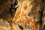 Prehistoric rock art on a cliff face near Mai Mai village, Namatota Strait, near Kaimana, Papua. Interesting figure recalls a 3-legged, well-endowed gecko.