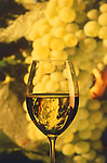 Chardonnay wine with chardonnay grapes