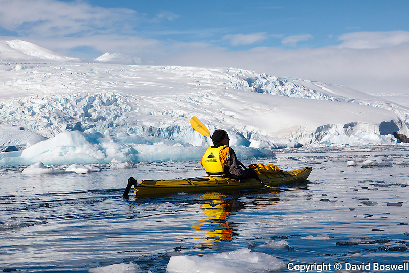 Sea kayaking is a great way to experience the ice in Cierva Cove, on the western shore of the Antarctic Peninsula of Antarctica.