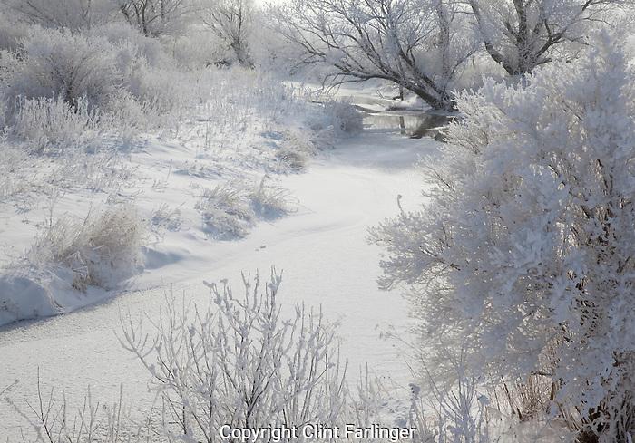 frozen stream and hoarfrost, Winneshiek County, Iowa
