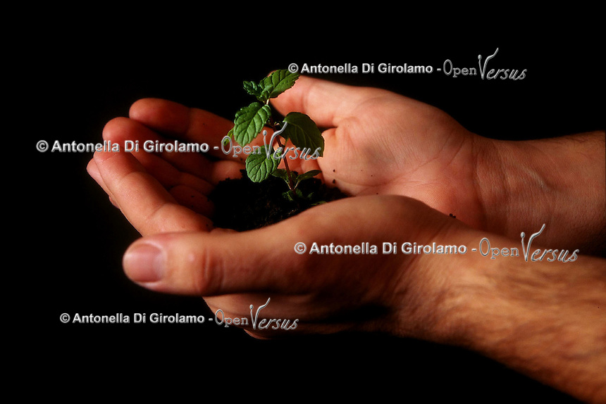 Un albero tra le mani a simboleggiare la tutela e protezione ambientale.A tree in his hands to symbolize the environmental protection...