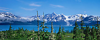 Cascade glacier flows out of the Chugach mountains, with Mt Gilbert rising high on the ridge, view across Port Wells, Prince William Sound, Alaska.