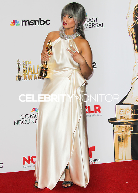 PASADENA, CA, USA - OCTOBER 10: Dascha Polanco poses in the press room at the 2014 NCLR ALMA Awards held at the Pasadena Civic Auditorium on October 10, 2014 in Pasadena, California, United States. (Photo by Celebrity Monitor)