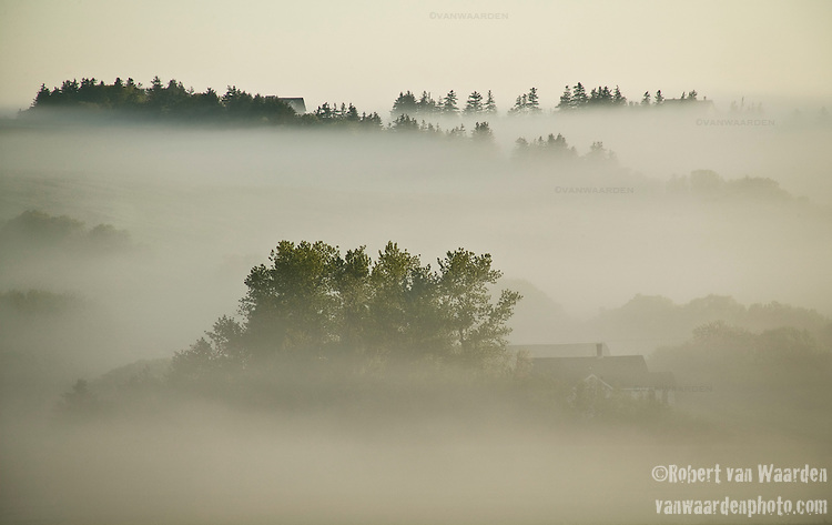 Early Morning mist in French River, PEI