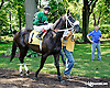 Middle Jewel before at Delaware Park on 7/17/14
