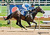Stone of Scone winning at Delaware Park on 7/17/13