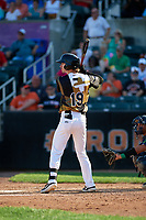 Aberdeen IronBirds Clay Fisher (19) at bat during a NY-Penn League game against the Vermont Lake Monsters on August 18, 2019 at Leidos Field at Ripken Stadium in Aberdeen, Maryland.  Vermont defeated Aberdeen 6-5.  (Mike Janes/Four Seam Images)