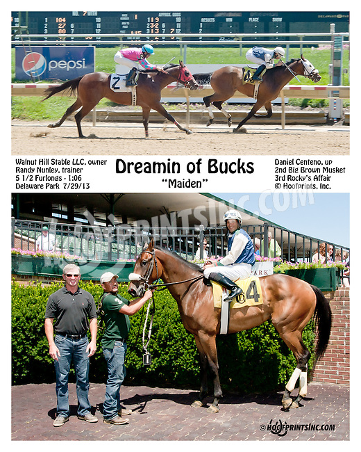 Dreamin of Bucks winning at Delaware Park on 7/29/13