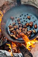 Europe/Provence-Alpes-Côte d'Azur/83/Var/Massif des Maures/Collobrières: Laurent Jartoux , castanéiculteur  Châtaigneraie Godissard prépare une castagnade - Châtaignes grillées