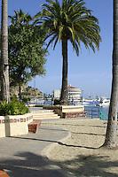 Board Walk And Beach At Avalon Bay