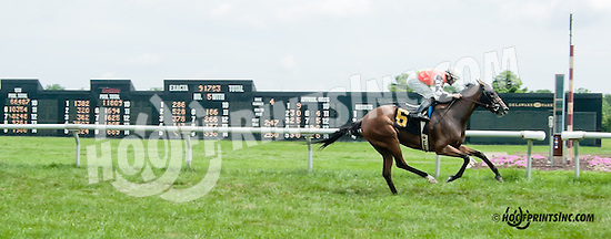 winning at Delaware Park on 7/11/13