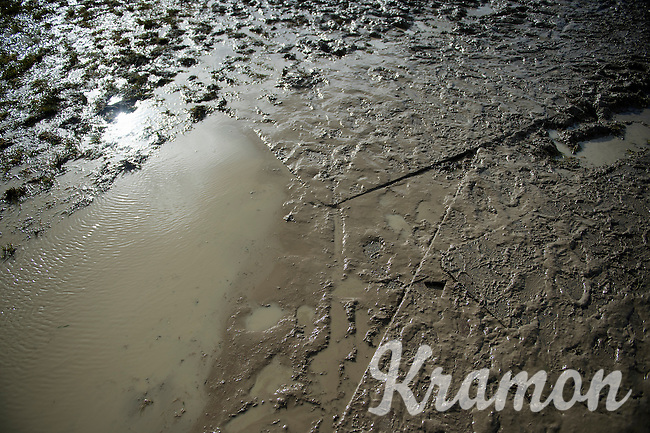 sunny muddy<br /> <br /> 2014 Noordzeecross