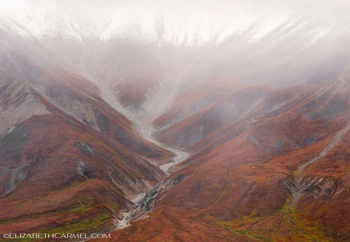 Autumn Mist
