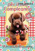 Marcello, CHILDREN BOOKS, BIRTHDAY, GEBURTSTAG, CUMPLEAÑOS, paintings+++++,ITMCEDH1316,#Bi#, EVERYDAY