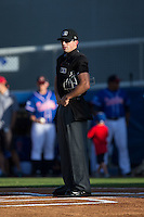 Home plate umpire Matthew Brown prior to the start of the Appalachian League game between the Kingsport Mets and the Danville Braves at American Legion Post 325 Field on July 9, 2016 in Danville, Virginia.  The Mets defeated the Braves 10-8.  (Brian Westerholt/Four Seam Images)