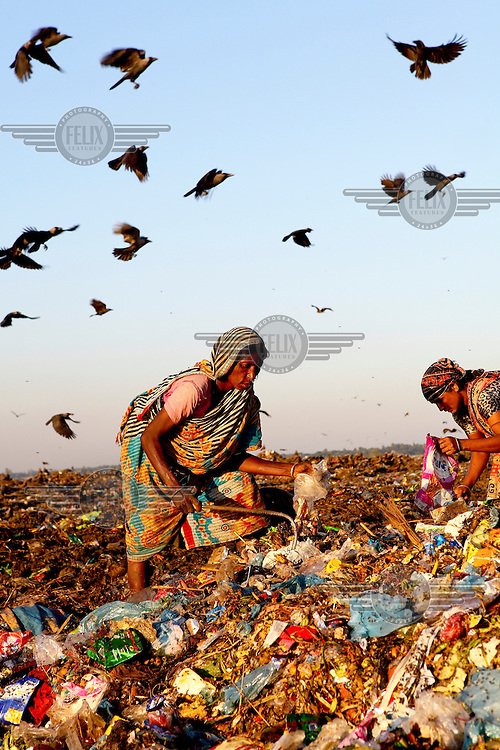Birds fly over women look for recyclable material at the biggest rubbish dump in Dhaka. The city alone generates about 3500 to 4000 metric tons of solid waste each day.