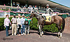 Forest Justice winning at Delaware Park on 9/7/13