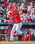 24 February 2019: St. Louis Cardinals catcher Francisco Pena at bat during a Spring Training game against the Washington Nationals at Roger Dean Stadium in Jupiter, Florida. The Cardinals fell to the Nationals 12-2 in Grapefruit League play. Mandatory Credit: Ed Wolfstein Photo *** RAW (NEF) Image File Available ***
