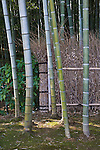 Kyoto City, Arashiyama District, Japan<br /> Arahaiyama Tenryuji temple, garden detail of fence line in the bamboo forest