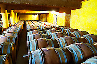 Domaine du Mas de Daumas Gassac. in Aniane. Languedoc. Barrel cellar. France. Europe.