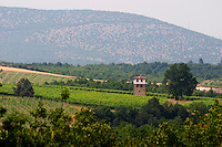 Vineyard. The watch tower. Kir-Yianni Winery, Yianakohori, Naoussa, Macedonia, Greece