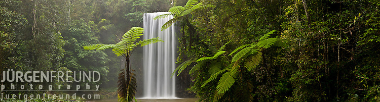 Millaa Millaa waterfall. Stitched panoramic