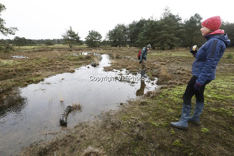 """Foto: VidiPhoto<br /> <br /> HOENDERLO – Toeristen nemen vrijdag massaal de gelegenheid om een bijzonder natuurfenomeen te bekijken. Voor het eerst in jaren """"stroomt het water als een dolle"""" door de heidebeek op de Hoge Veluwe. Boswachter Henk Ruseler spreekt van een unieke situatie. Dit komt bijna nooit voor. Waar de het water tijdens normale 'natte' perioden rustig langs de stuwwal van het Deelense Veld meandert, stroomt het dankzij de natste februari ooit als nooit tevoren. De afgelopen jaren stond de beek zelfs helemaal droog. Die droogte behoort zelfs op de Veluwe en de Achterhoek nu tot het verleden. De andere gebieden in ons land zijn zelfs zo nat, dat akker niet meer bewerkt kunnen worden en boeren hun mest niet meer kunnen uitrijden."""