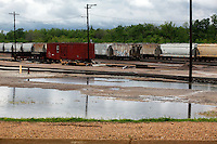 Train cars sit in flooded water in Poplar Bluff, MO on Wednesday, April 27, 2011. By Wednesday night, official water levels in Poplar Bluff had reached to 19.54 feet.