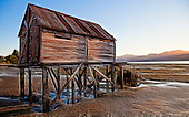 Standing tall on many wooden legs an old Otago Harbour boatshed watches the light of yet another day fade from the tidal flats..This New Zealand Fine Art Landscape Print, available in four sizes on either archival Hahnemuhle Fine Art Pearl paper or canvas, is printed using Epson K3 Ultrachrome inks and comes with a lifetime guarantee against fading..All prints are signed and numbered on the lower margin and come with my 100% money back guarantee on the purchase price, should you not be  completely happy with the quality of the delivered print or canvas.