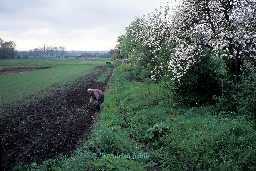 A peasant farmer tends to the land on the Polish Byelorussian border. Poland.
