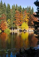 DEU, Deutschland, Bayern, Niederbayern, Naturpark Bayerischer Wald, Grosser Arbersee, zwischen Bayerisch Eisenstein und Bodenmais | DEU, Germany, Bavaria, Lower-Bavaria, Nature Park Bavarian Forest, Great Arber Lake