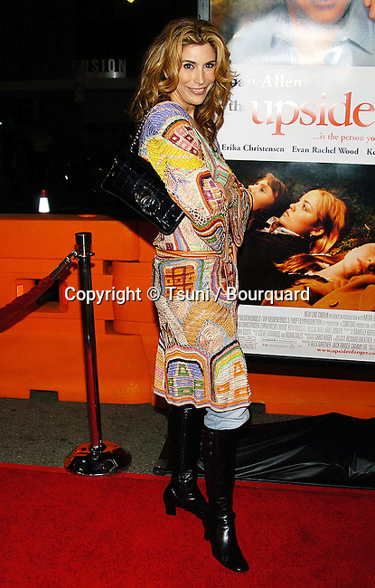 Jo Champa arriving at the Upside Of Anger Premiere at The National Theatre in Los Angeles. March 3, 2005.<br /> <br /> back of the dress<br /> over the shoulder