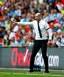 Reading manager Jaap Stam gestures during the SkyBet Championship Play Off Final match at the Wembley Stadium, England. Picture date: May 29th, 2017.Picture credit should read: Matt McNulty/Sportimage