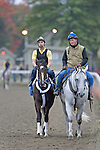 Rachel Alexandra's final workout - Saratoga 9-27-10
