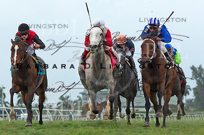 Florida Derby day - Gulfstream Park 3-31-12.