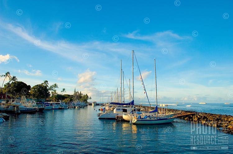Early Morning at Lahaina Small Boat Harbor, Lahaina, Maui, Hawaii