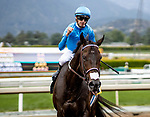 MAY 27: Bolo with Florent Geroux wins the Shoemaker Mile at Santa Anita at Santa Anita Park in Arcadia, California on May 27, 2019. Evers/Eclipse Sportswire/CSM